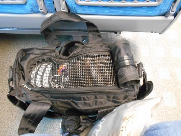 181028名古屋UP用 110103ゆずは10kg対応のキャリーバックにIN動き出してからお膝に抱っこしてたよ