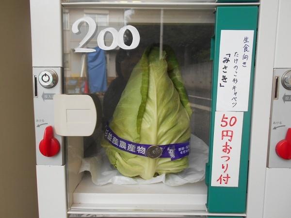 18110707形も面白いけどお釣りが野菜にくっついてるのも面白いw