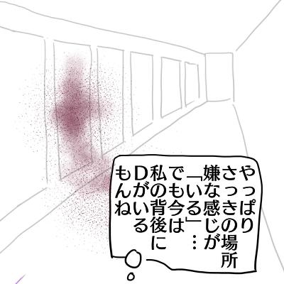 dg335.jpg