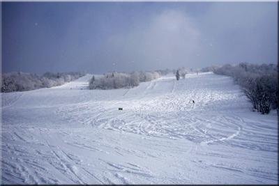 ski31.jpg