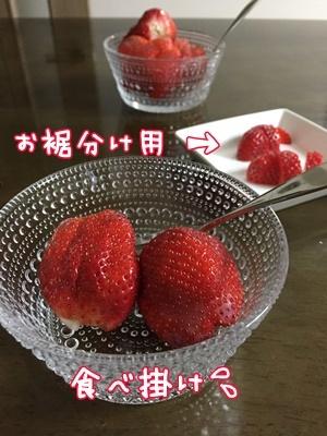 IMG_4231.jpg