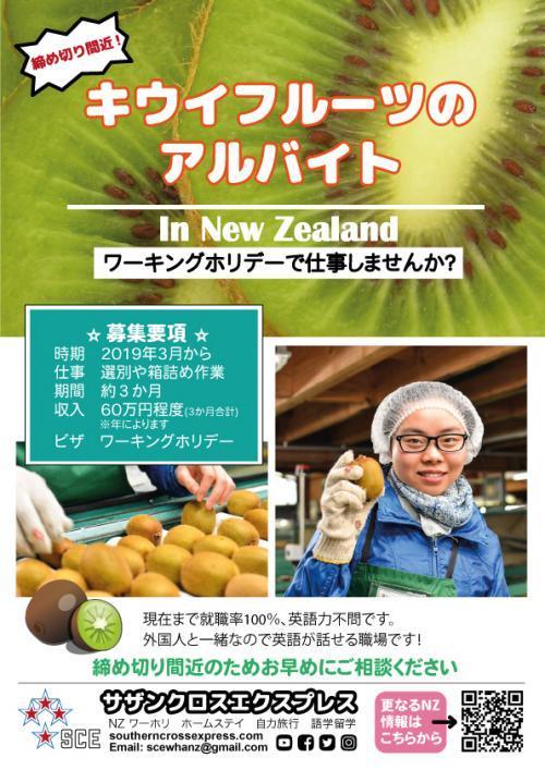 Kiwi-job-workers-jpeg 500