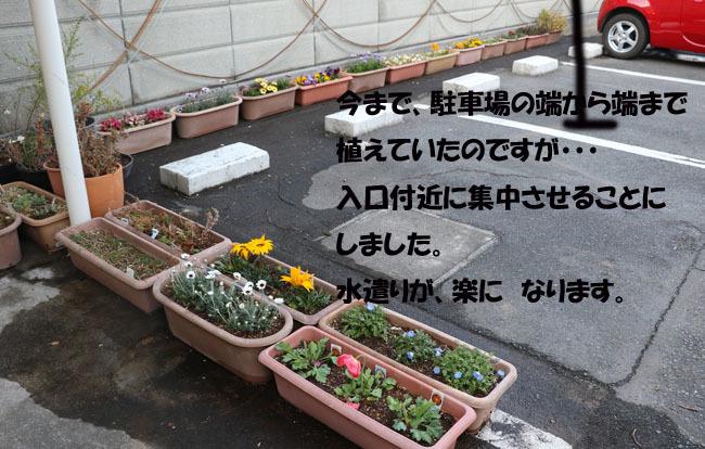 0A1A8029-9876545-87654.jpg
