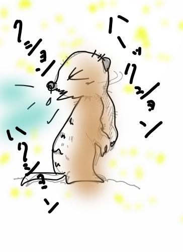 meeacatsneezesneeze.jpg