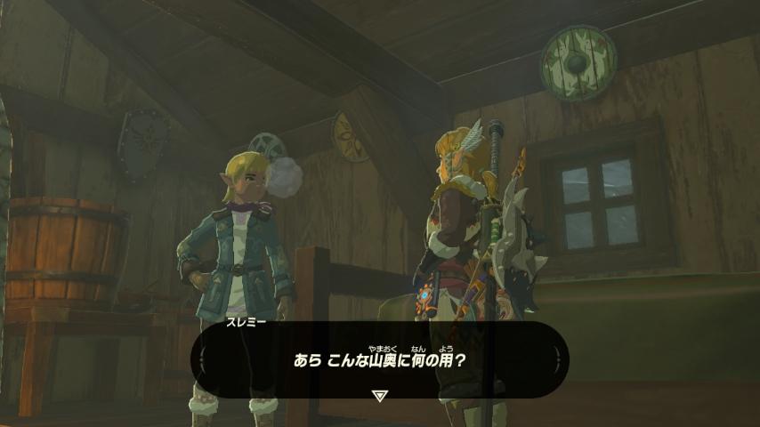 WiiU_screenshot_GamePad_01C93_201703231102258e0.jpg