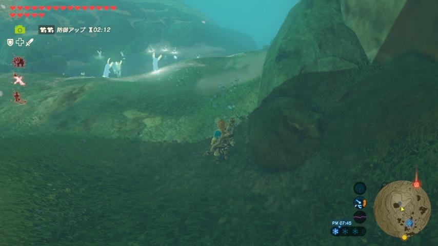 WiiU_screenshot_GamePad_01C93_20170325162533398.jpg