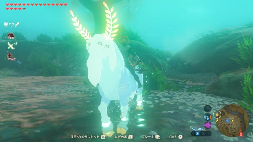WiiU_screenshot_GamePad_01C93_20170325163325d43.jpg