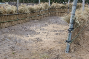 170216新しい堆肥場2