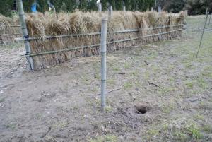 170327サブが掘った穴2