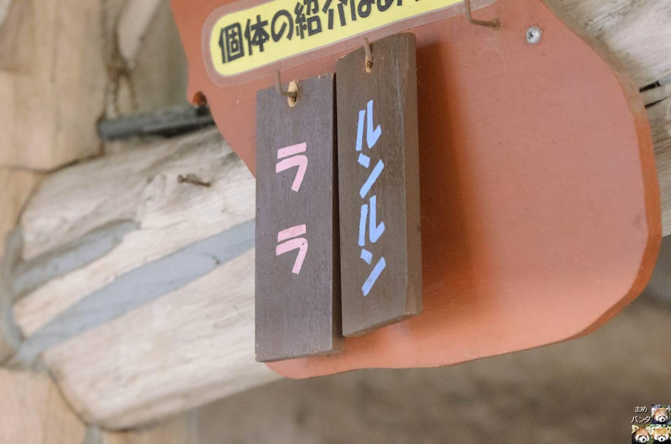 116_4909.jpg