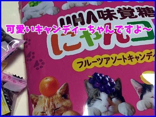 可愛いいキャンディー