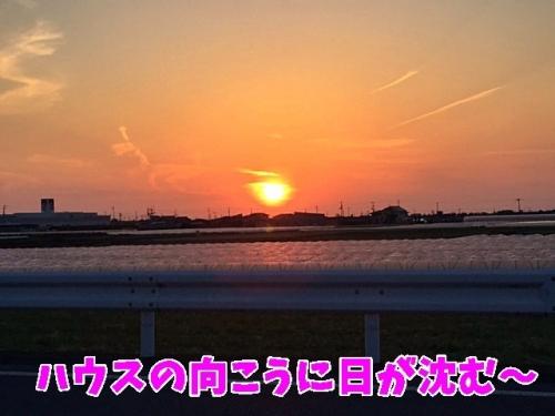 夕陽が・・・