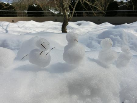 箱根 3月の雪3
