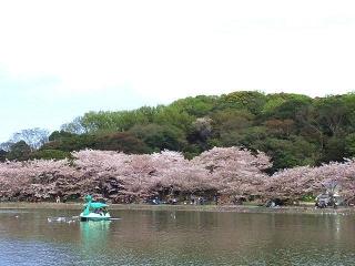 170416_4577 公園の池の風景VGA