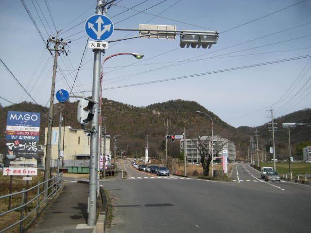 IMG_1779-2.jpg