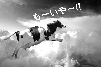 Cow-leaping-Fotolia_5894964_XS1.jpg