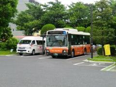 大井総合支所