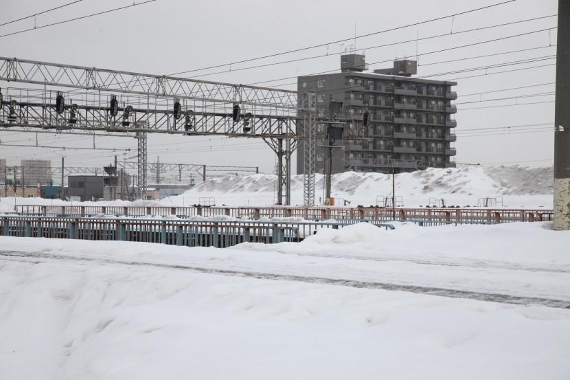satsuyukiIMG_8604-1.jpg