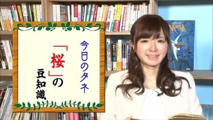 170326 朝ダネ 紺野あさ美 (6)