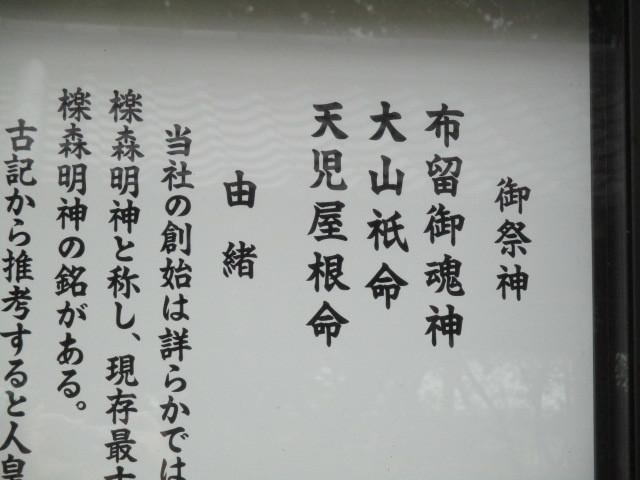 IMG_3460.jpg