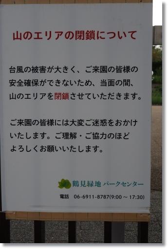 NEO01417.jpg