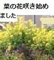 20170324124009b7a.jpg