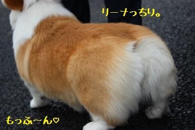12IMG_0134.jpg