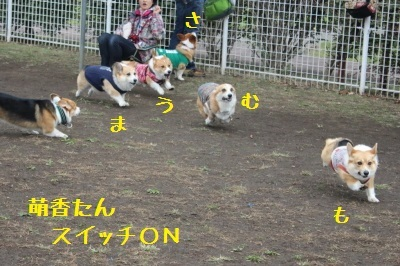 201702131746004a2.jpg