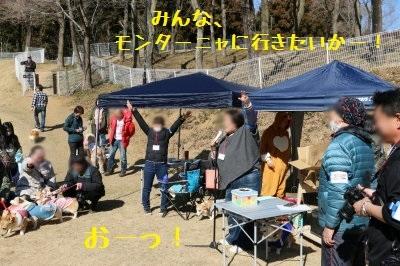2IMG_2648_xlarge.jpg