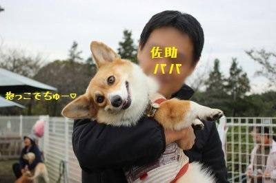 6IMG_6528.jpg