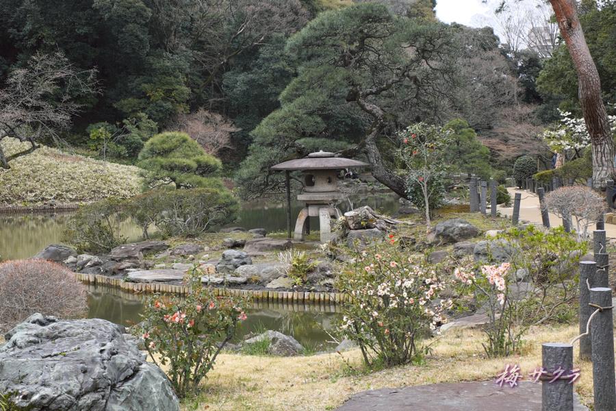 細川庭園7変更済