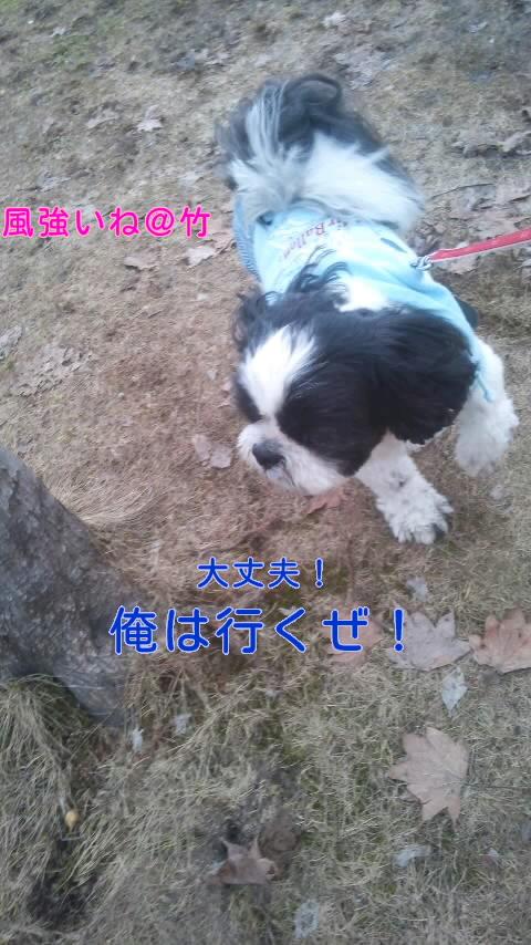moblog_1aa50269.jpg