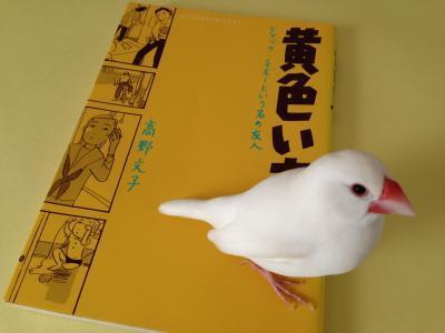 kiiroihon_.jpg
