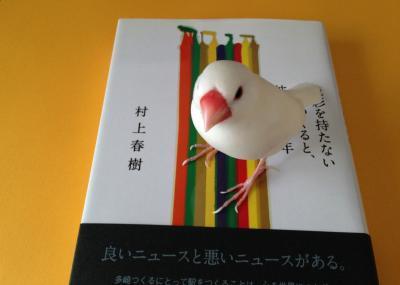 shikisaio_.jpg