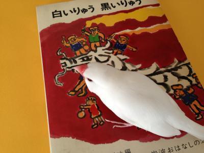 shirokuroryu_.jpg