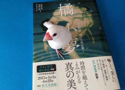 tachibanakoyume_.jpg
