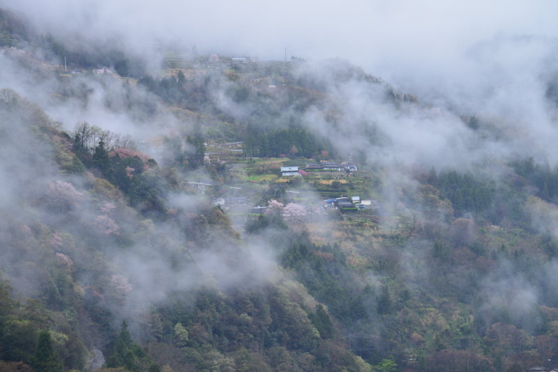 「湧雲の山村」   (徳島県山城町)