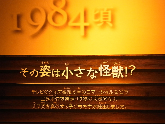 R0018655.jpg