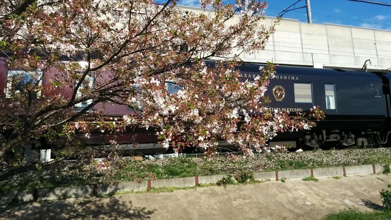 ななつ星in九州と桜
