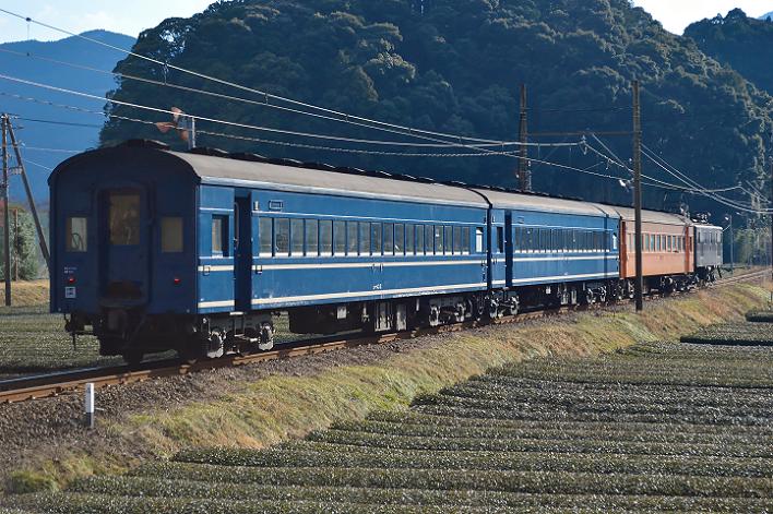 DSC_1036-2-1.png