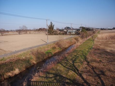 牛の堀川【埼玉県加須市】
