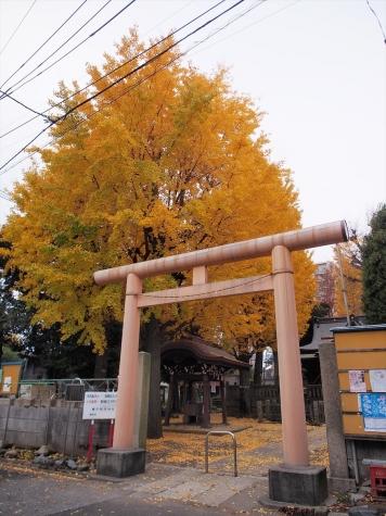橋戸稲荷神社【千住橋戸町】