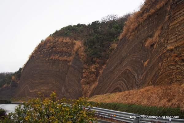 地層切断面 大島 バームクーヘン