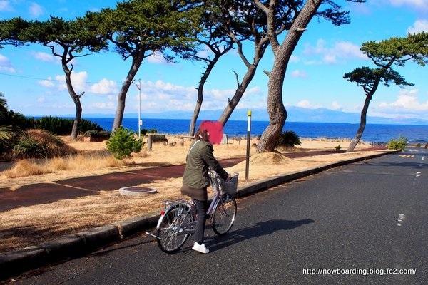 サイクリング 伊豆大島