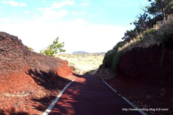 サンセットパームライン サイクリング