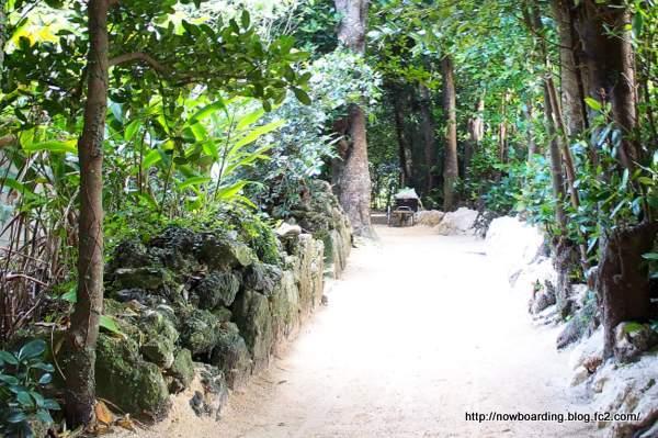 備瀬(びせ)のフクギ並木 砂道