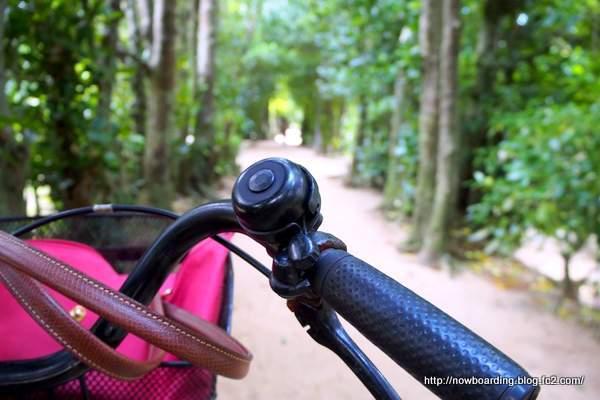 備瀬(びせ)のフクギ並木 サイクリング