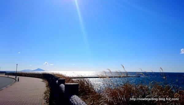 伊豆大島 サイクリング