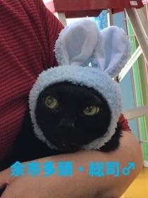 総司_170211_0004