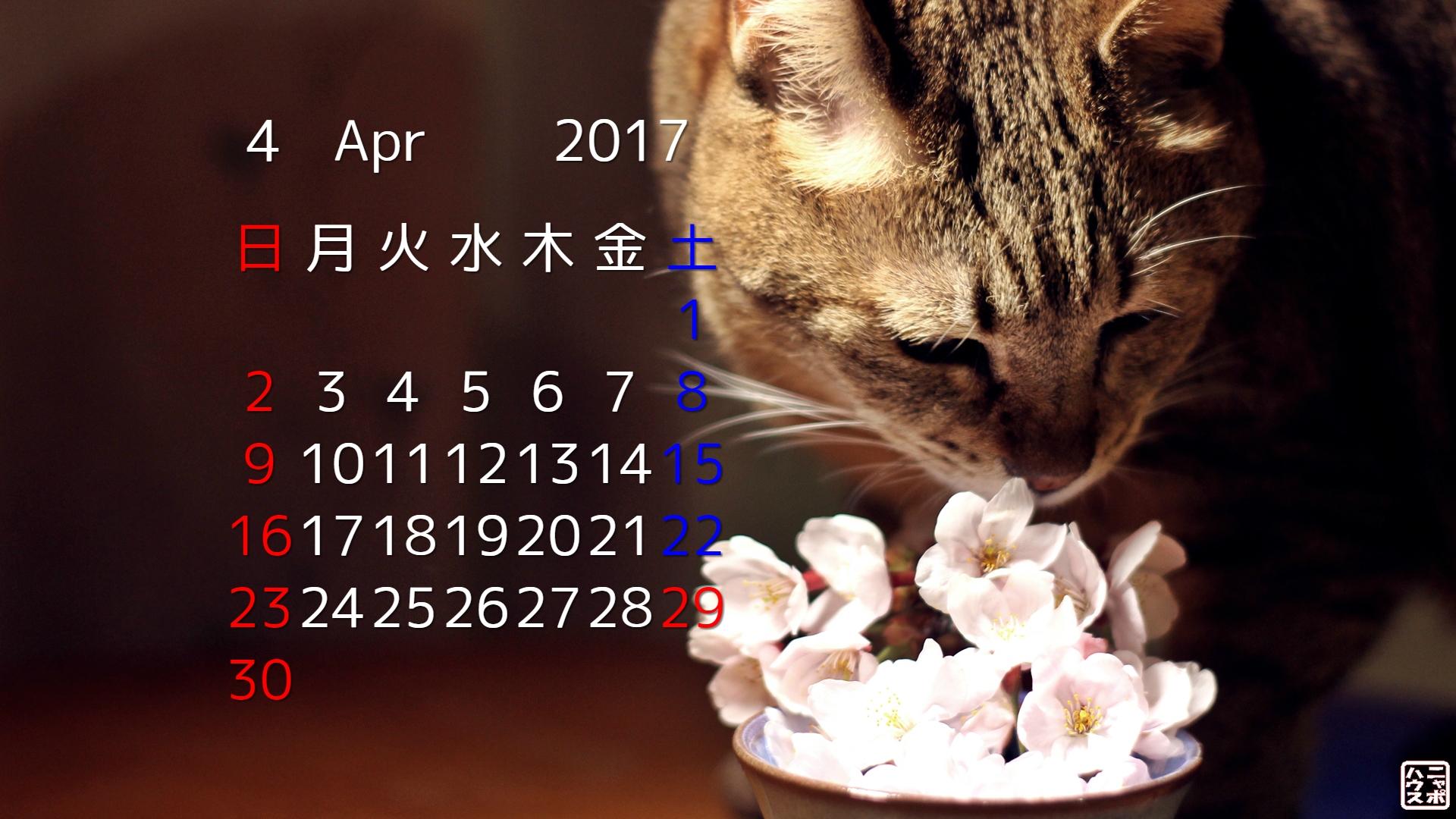 2017年4月 猫デスクトップカレンダーその2
